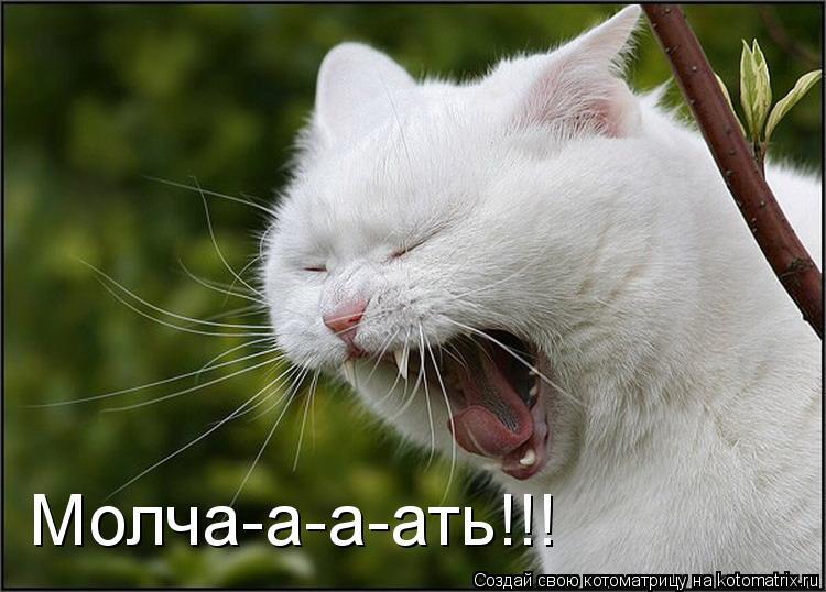 Котоматрица: Молча-а-а-ать!!!