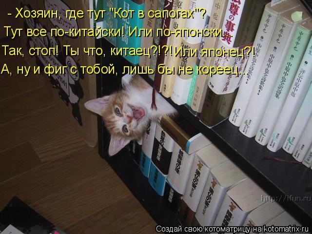 """Котоматрица: - Хозяин, где тут """"Кот в сапогах""""? Тут все по-китайски! Или по-японски... Так, стоп! Ты что, китаец?!?! А, ну и фиг с тобой, лишь бы не кореец... Или"""
