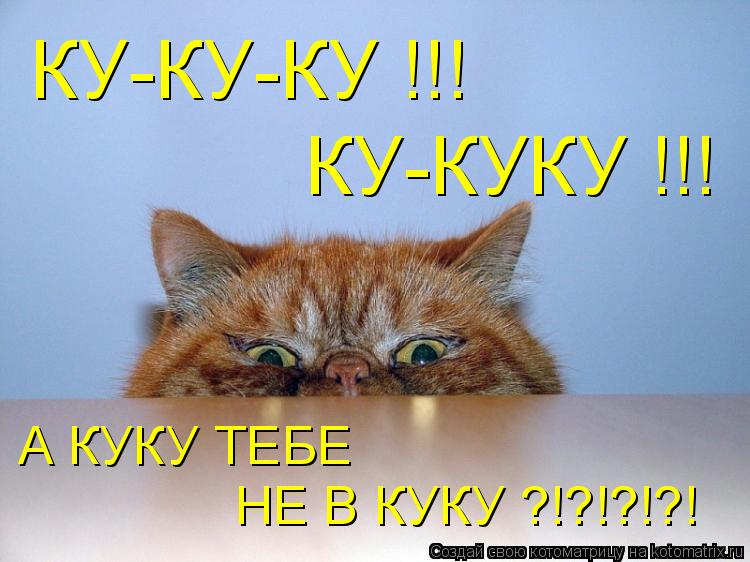 Котоматрица: КУ-КУКУ !!! КУ-КУ-КУ !!! А КУКУ ТЕБЕ   НЕ В КУКУ ?!?!?!?!