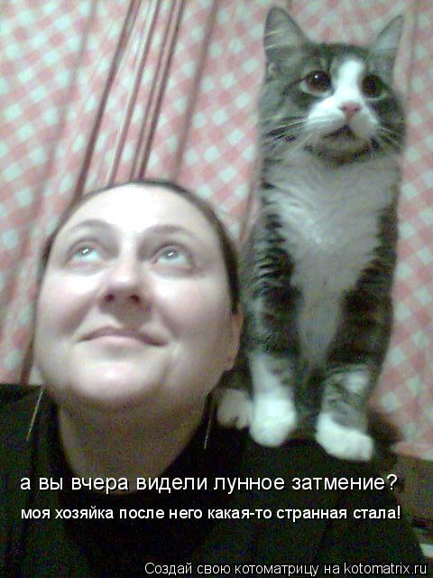 Котоматрица: а вы вчера видели лунное затмение? моя хозяйка после него какая-то странная стала!