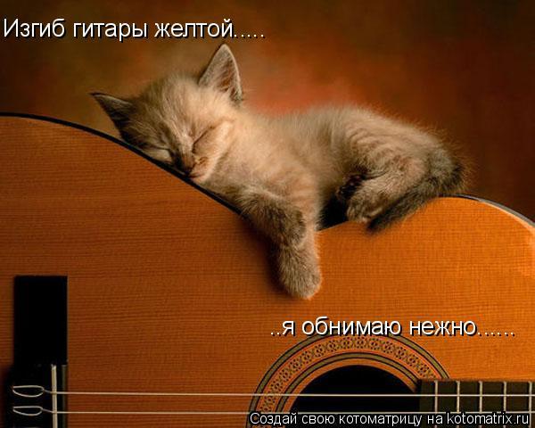 Котоматрица: Изгиб гитары желтой..... ..я обнимаю нежно......
