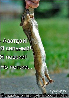 Котоматрица: - Ааатдай! Я сильный! Я ловкий! Но легкий...
