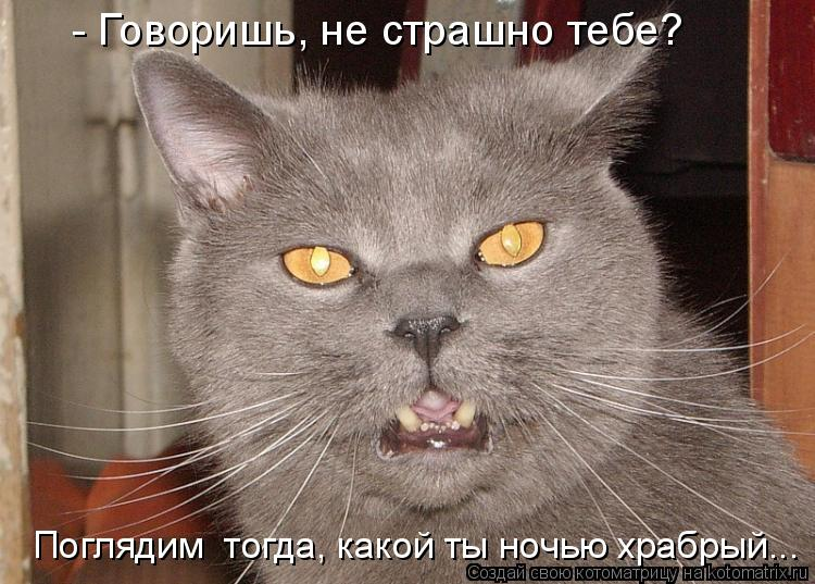 Котоматрица: - Говоришь, не страшно тебе? Поглядим  тогда, какой ты ночью храбрый...