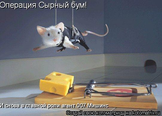 Котоматрица: Операция Сырный бум! И снова в главной роли агент 007 Мишинс