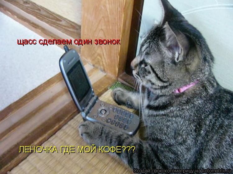 Котоматрица: щасс сделаем один звонок ЛЕНОЧКА ГДЕ МОЙ КОФЕ???