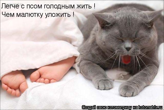 Котоматрица: Чем малютку уложить ! Легче с псом голодным жить !