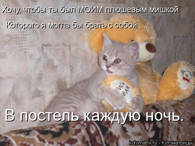 Котоматрица: Хочу, чтобы ты был МОИМ плюшевым мишкой Которого я могла бы брать с собой .... В постель каждую ночь.