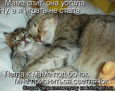 Котоматрица: Мама спит, она устала Ну, а я играть не стала Легла к маме под бочок Мне присниться светлячок