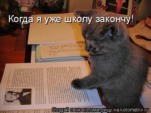 Котоматрица: Когда я уже школу закончу!