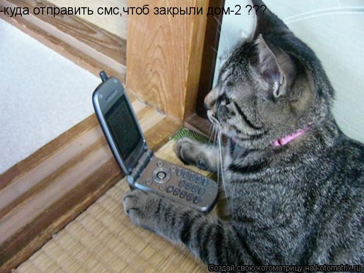 Котоматрица: -куда отправить смс,чтоб закрыли дом-2 ???