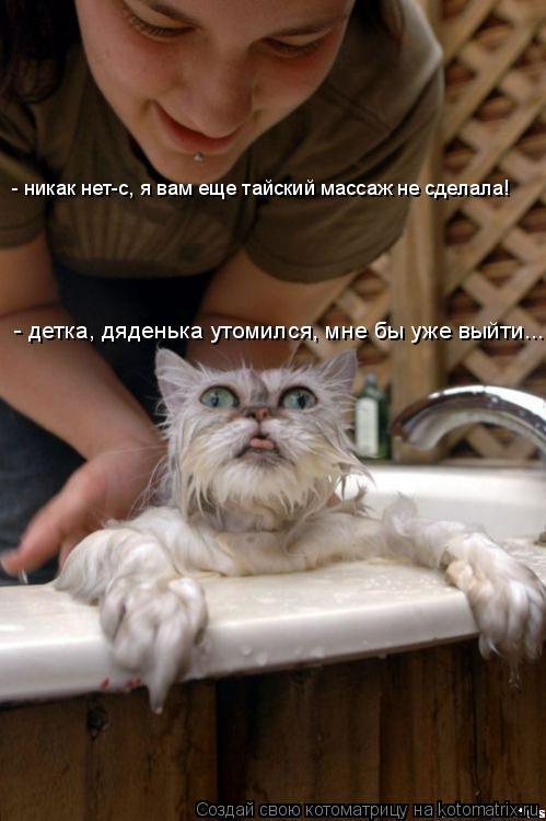 Котоматрица: - детка, дяденька утомился, мне бы уже выйти... - никак нет-с, я вам еще тайский массаж не сделала!