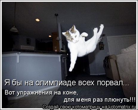 Котоматрица: Я бы на олимпиаде всех порвал... Вот упражнения на коне, для меня раз плюнуть!!!