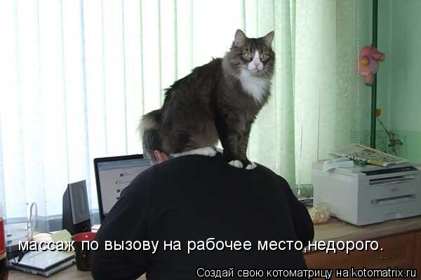 Котоматрица: массаж по вызову на рабочее место,недорого.