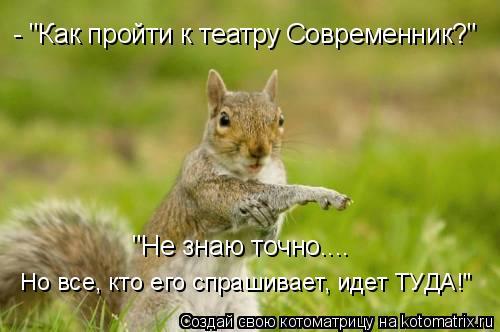 """Котоматрица: - """"Как пройти к театру Современник?"""" """"Не знаю точно.... Но все, кто его спрашивает, идет ТУДА!"""""""