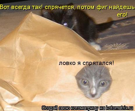 Котоматрица: Вот всегда так! спрячется, потом фиг найдешь его! ловко я спрятался!