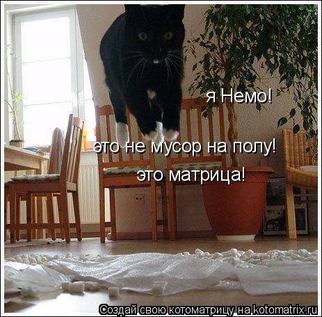 Котоматрица: я Немо! это матрица! это не мусор на полу!