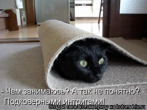 Котоматрица: - Чем занимаюсь? А так не понятно? Подковерными интригами!
