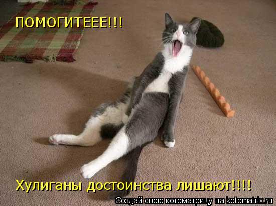 Котоматрица: ПОМОГИТЕЕЕ!!! Хулиганы достоинства лишают!!!!