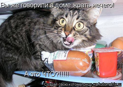 Котоматрица: Вы же говорили в доме жрать нечего! А это ЧТО?!!!!!
