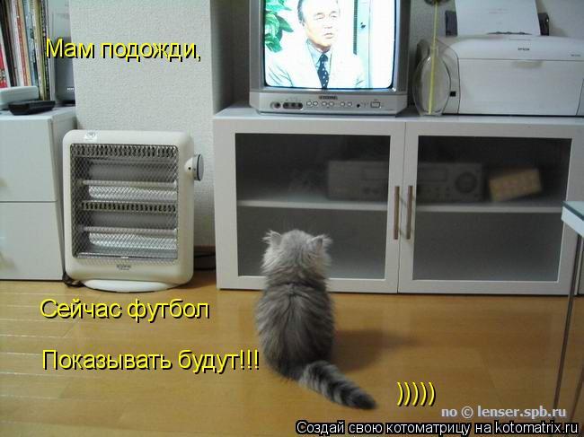 Котоматрица: Мам подожди, Сейчас футбол  Показывать будут!!! )))))