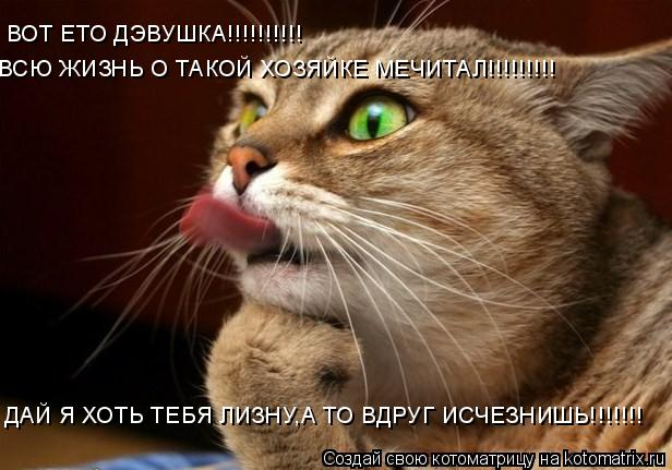 Котоматрица: ВОТ ЕТО ДЭВУШКА!!!!!!!!!!  ВСЮ ЖИЗНЬ О ТАКОЙ ХОЗЯЙКЕ МЕЧИТАЛ!!!!!!!!! ДАЙ Я ХОТЬ ТЕБЯ ЛИЗНУ,А ТО ВДРУГ ИСЧЕЗНИШЬ!!!!!!!