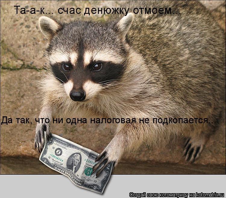 Котоматрица: Та-а-к... счас денюжку отмоем... Да так, что ни одна налоговая не подкопается...