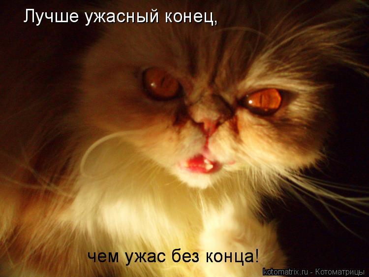 Котоматрица: Лучше ужасный конец, чем ужас без конца! чем ужас без конца!