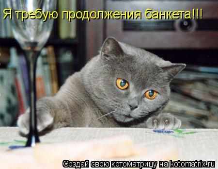 Котоматрица: Я требую продолжения банкета!!!