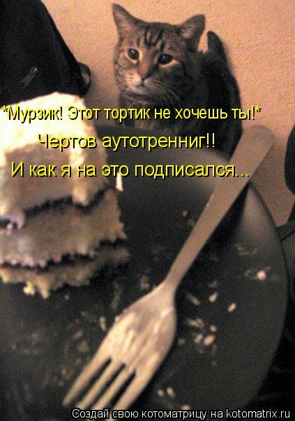 Котоматрица: *Мурзик! Этот тортик не хочешь ты!*    Чертов аутотренниг!!  И как я на это подписался...