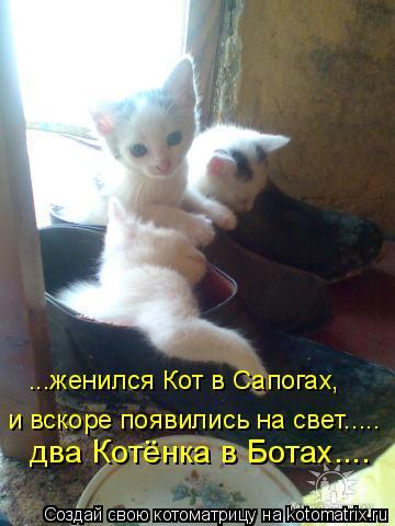 Котоматрица: ...женился Кот в Сапогах, и вскоре появились на свет..... два Котёнка в Ботах....