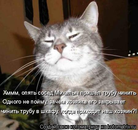 Котоматрица: Хммм, опять сосед Михалыч пришёл трубу чинить Одного не пойму, зачем хозяйка его закрывает чинить трубу в шкафу, когда приходит наш хозяин?!