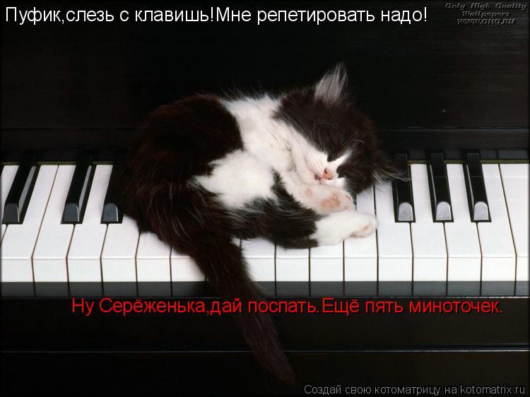 Котоматрица: Пуфик,слезь с клавишь!Мне репетировать надо! Ну Серёженька,дай поспать.Ещё пять миноточек.