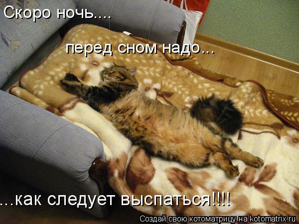 Котоматрица: Скоро ночь.... перед сном надо... ...как следует выспаться!!!!