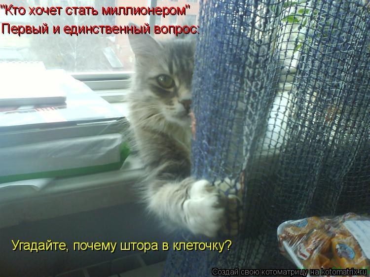 """Котоматрица: """"Кто хочет стать миллионером"""" Первый и единственный вопрос: Угадайте, почему штора в клеточку?"""