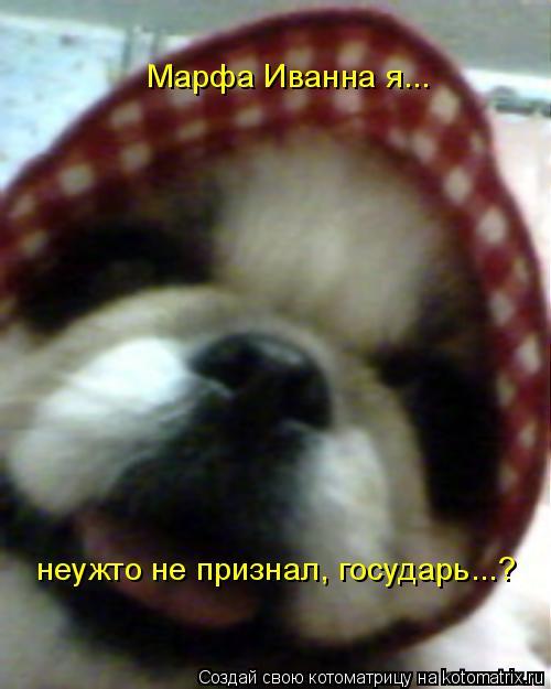 Котоматрица: Марфа Иванна я...  неужто не признал, государь...?