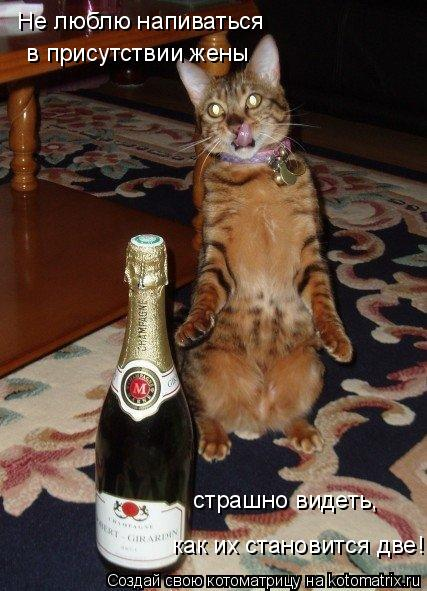 Котоматрица: Не люблю напиваться  в присутствии жены страшно видеть,  как их становится две!