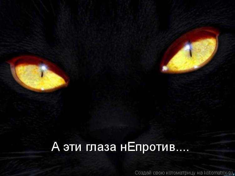 Котоматрица: А эти глаза нЕпротив....