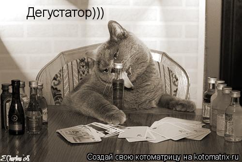 Котоматрица: Дегустатор)))