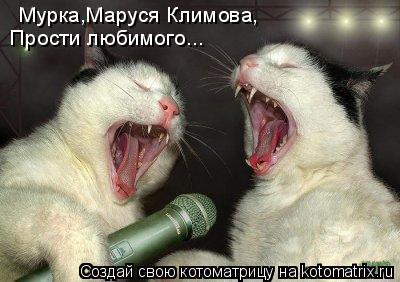 Котоматрица: Мурка,Маруся Климова, Прости любимого...