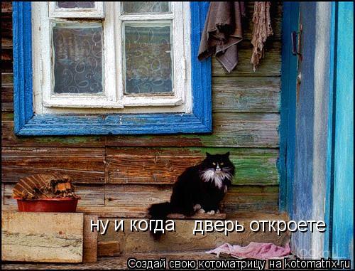 Котоматрица: дверь откроете ну и когда