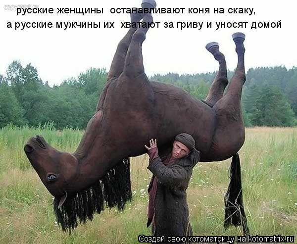 Котоматрица: русские женщины  останавливают коня на скаку,  а русские мужчины их  хватают за гриву и уносят домой