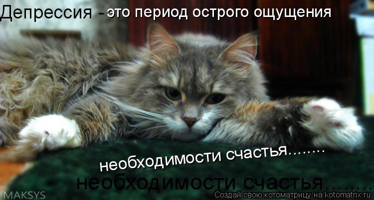 Котоматрица: Депрессия -  это период острого ощущения необходимости счастья........ необходимости счастья........