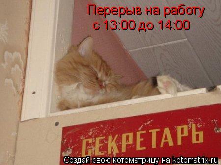 Котоматрица: Перерыв на работу с 13:00 до 14:00