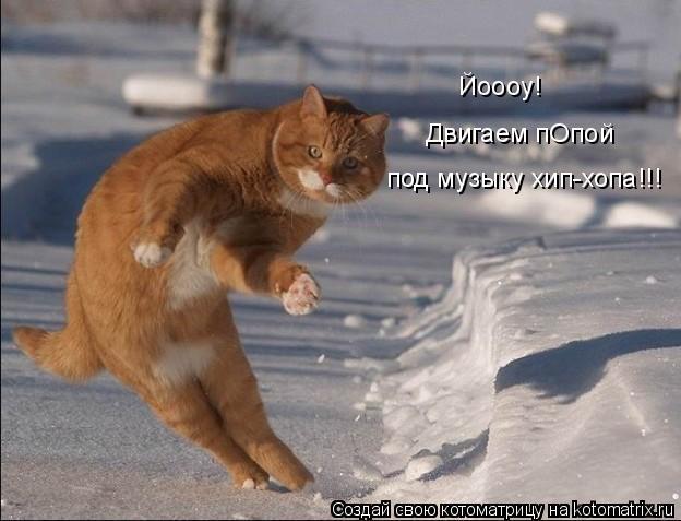 Котоматрица: Двигаем пОпой под музыку хип-хопа!!! Йоооу!