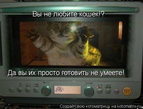 Котоматрица: Вы не любите кошек!? Да вы их просто готовить не умеете!