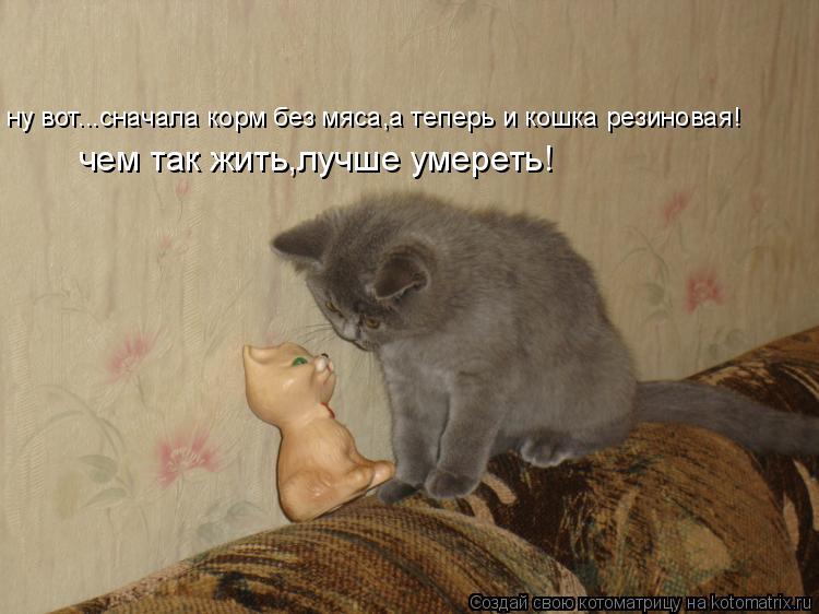Котоматрица: ну вот...сначала корм без мяса,а теперь и кошка резиновая! чем так жить,лучше умереть!