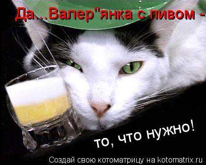 """Котоматрица: Да...Валер""""янка с пивом - то, что нужно!"""