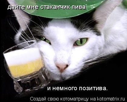 Котоматрица: дайте мне стаканчик пива дайте мне стаканчик пива и немного позитива.