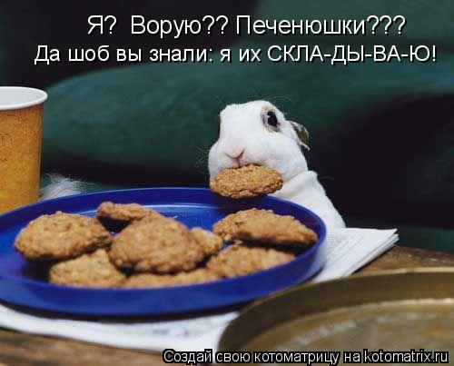 Котоматрица: Я?  Ворую?? Печенюшки??? Да шоб вы знали: я их СКЛА-ДЫ-ВА-Ю!