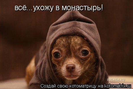 Котоматрица: всё...ухожу в монастырь!